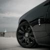 Rolls-Royce Dawn 25
